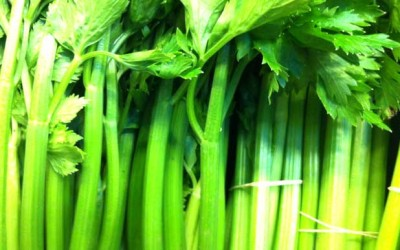 Juicing FAQs: What Can I Use to Replace Celery?
