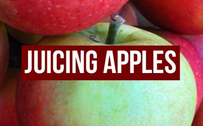Juicing Apples – An Apple A Day…