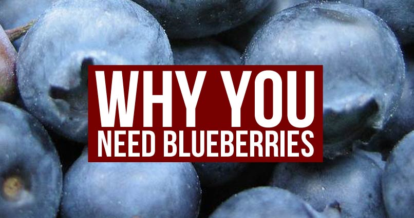 Blueberries Could Protect Against Obesity, Heart Disease and Diabetes