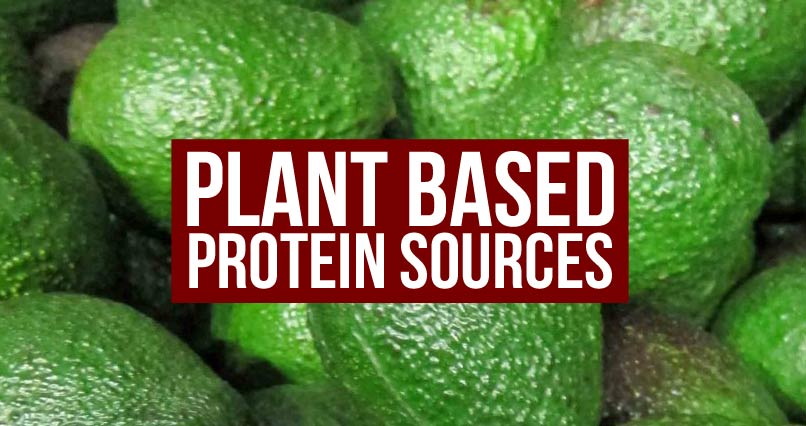 Need More Protein? Plant Based Protein Sources